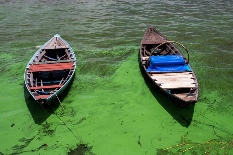 Boats floating in algae covered water, Santarem, Brazil.