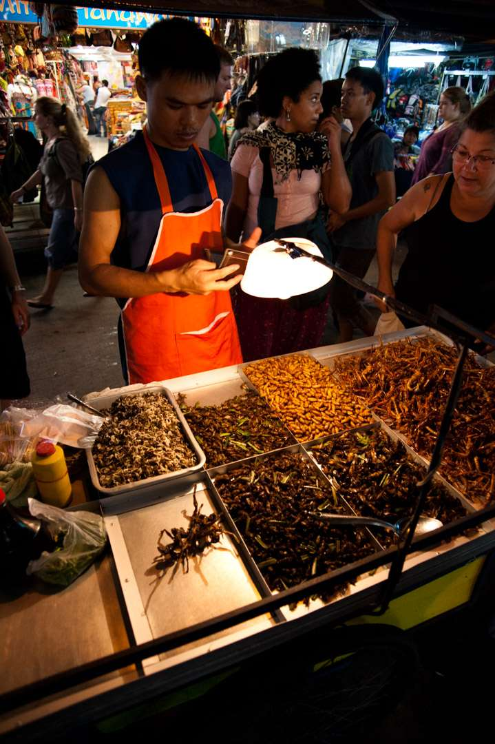 A photo of an insect snack vendor in Bangkok, Thailand.
